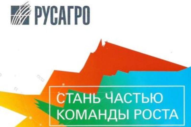 Гимназия № 1 Балакова заслужила грант размером в 555 тысяч рублей