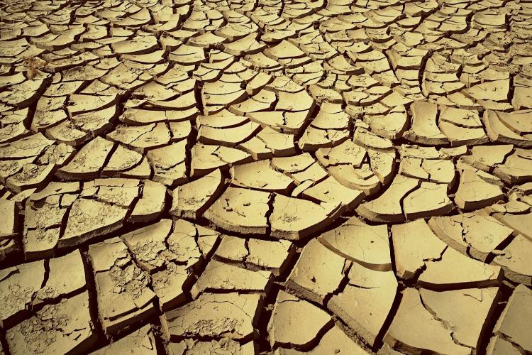 Жители бьют тревогу! В селе под Балаковом уже неделю нет воды