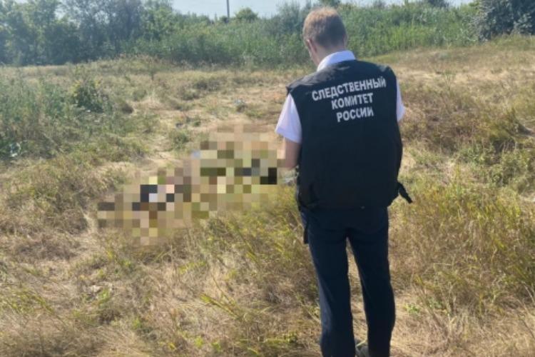 В поле под Балаковом пастух нашел останки человека