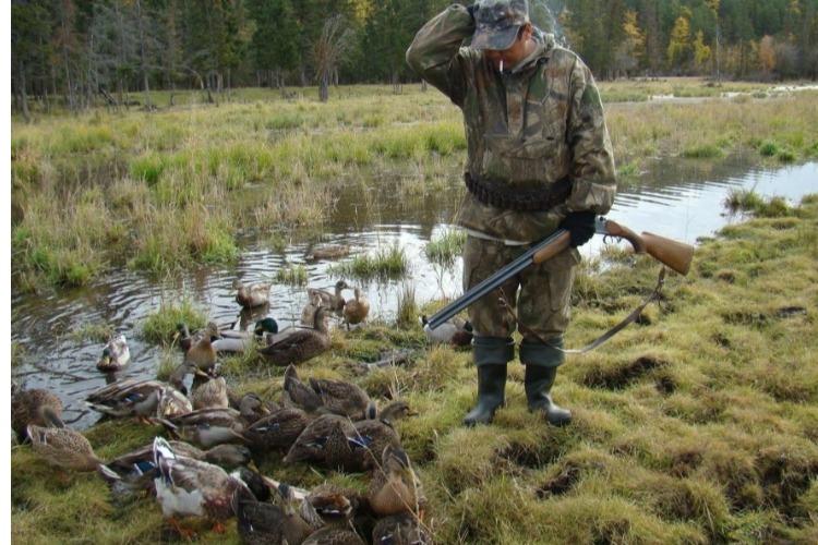 В субботу в Балаково откроется охота на пернатую дичь