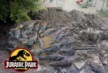 Юрский парк Балакова. Глава 2. Крокодилы-людоеды у детской площадки