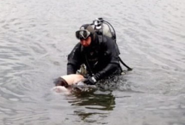 В Балаково прохожие заметили в канале тело мужчины