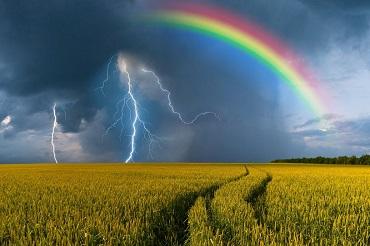 На область надвигаются грозы и ветер с дождем