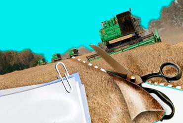 Есть намерение навести порядок с землями сельхозназначения