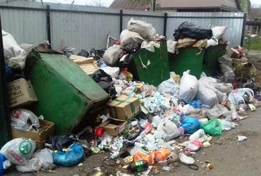 ЖЭК №3 оштрафовали на 100 тысяч за мусорную свалку
