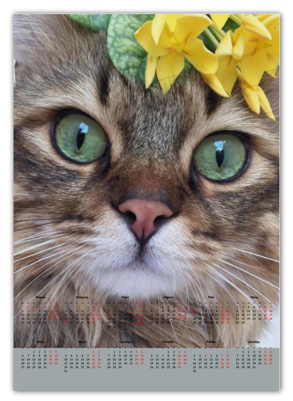 Printio Календарь А2 Кошки. магия красоты недорого