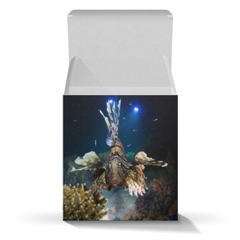Printio Коробка для кружек Рыба крылатка printio коробка для кружек рыба крылатка