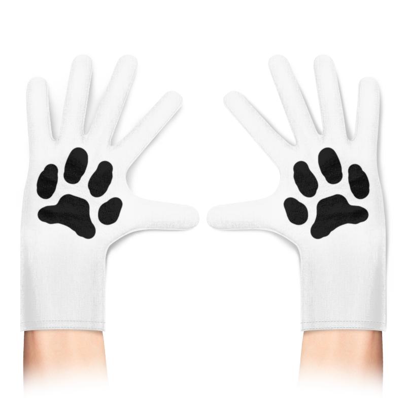 Printio Перчатки с полной запечаткой Лапа кошки
