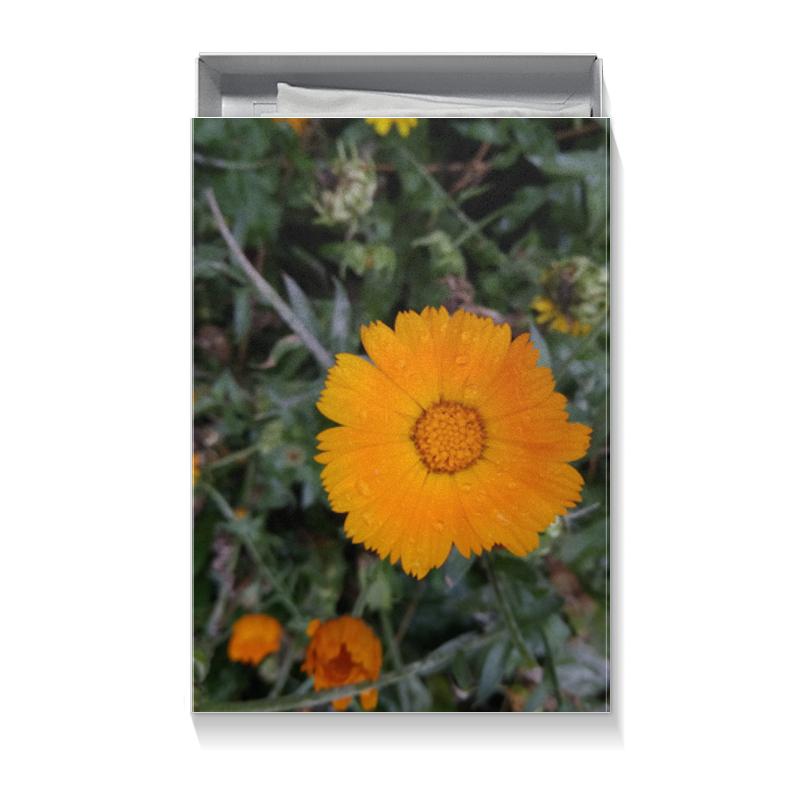 Printio Коробка для футболок Летние цветы