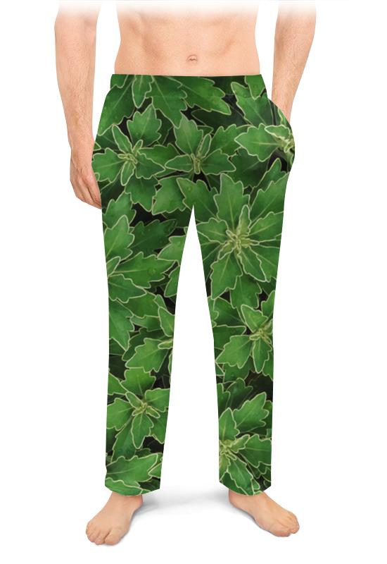 Printio Мужские пижамные штаны Зеленые листья