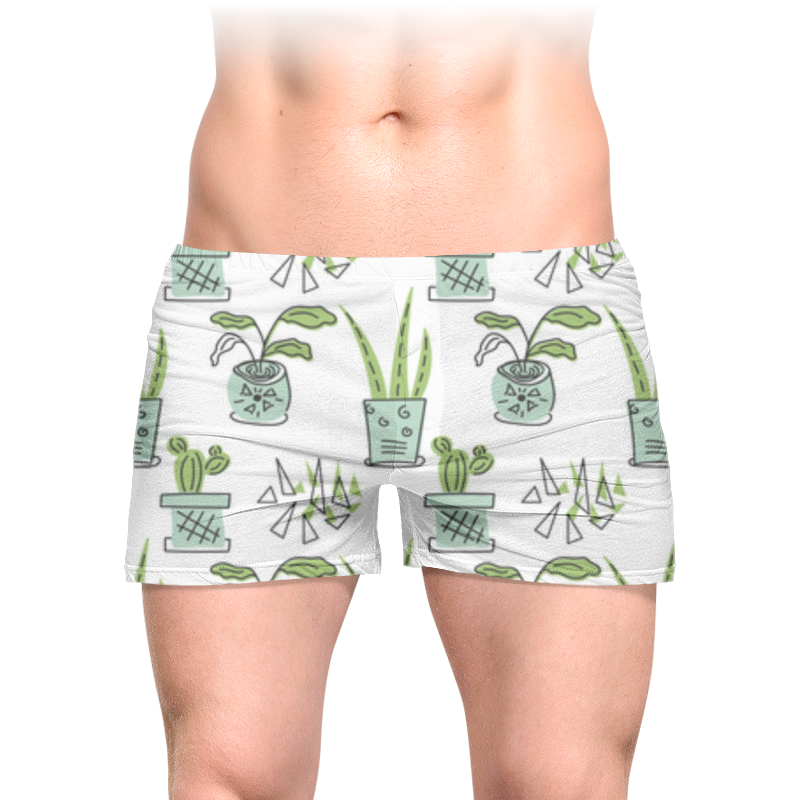 Printio Трусы мужские с полной запечаткой Комнатные растения