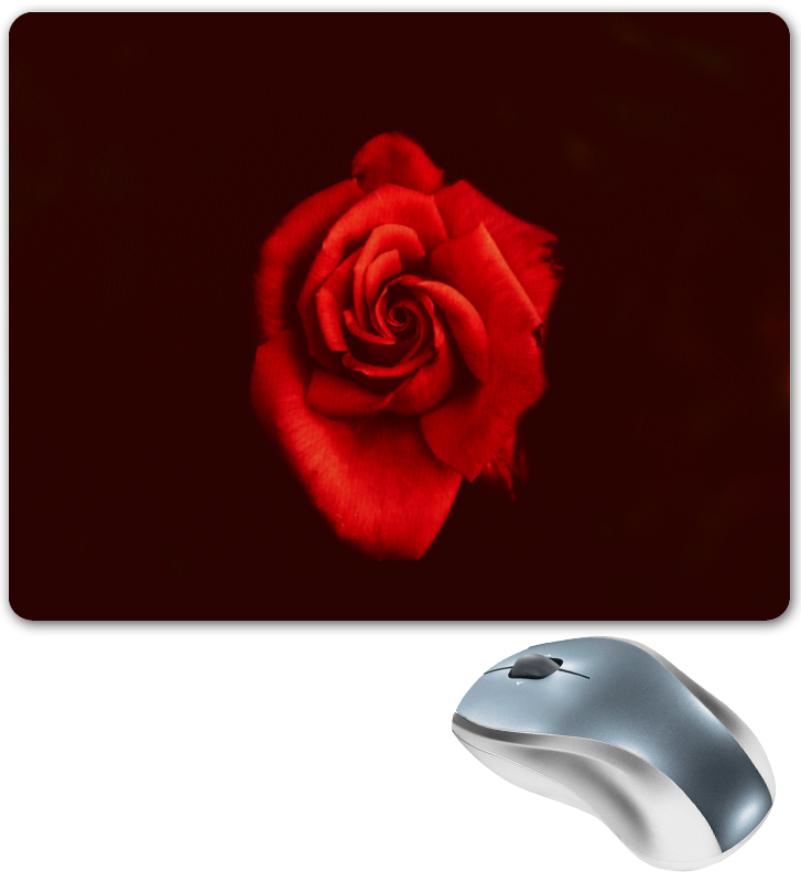 Фото - Printio Коврик для мышки Красная роза printio коврик для мышки золотая роза