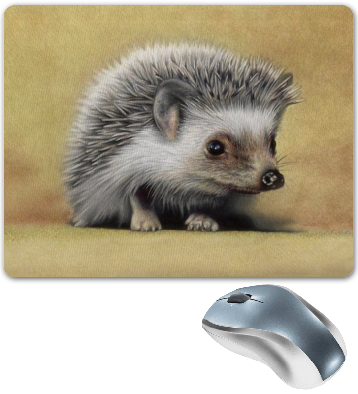 Printio Коврик для мышки Лесной ёжик