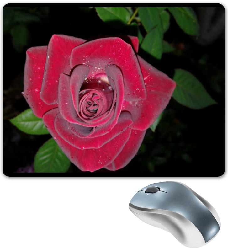 Фото - Printio Коврик для мышки Алая роза printio коврик для мышки золотая роза
