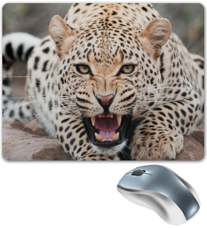 printio коврик для мышки шварц со своим кумиром александром невским Printio Коврик для мышки Леопард