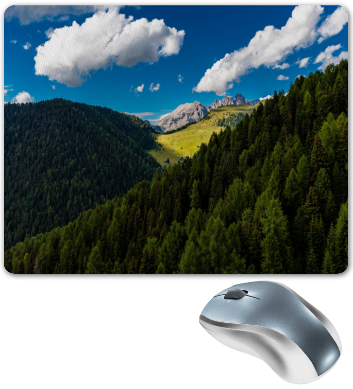 Printio Коврик для мышки Лесной склон