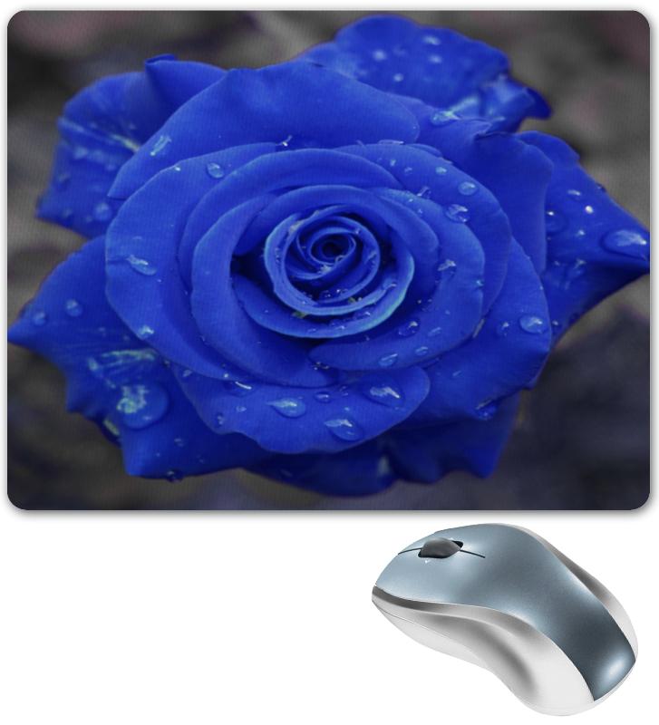 Фото - Printio Коврик для мышки Синяя роза printio коврик для мышки золотая роза