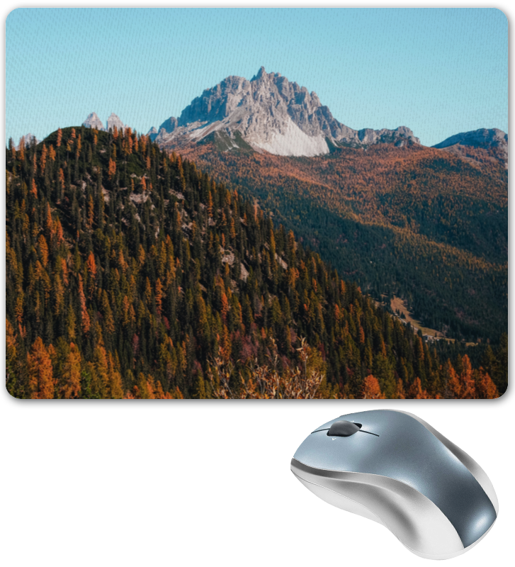 Printio Коврик для мышки Скалы и лес printio коврик для мышки круглый скалы и лес