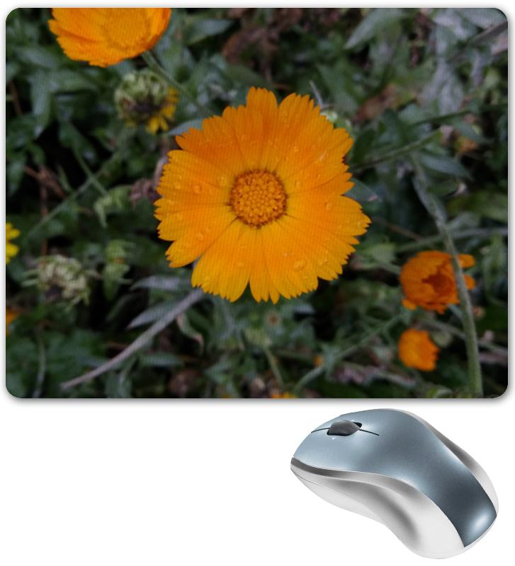 Printio Коврик для мышки Летние цветы
