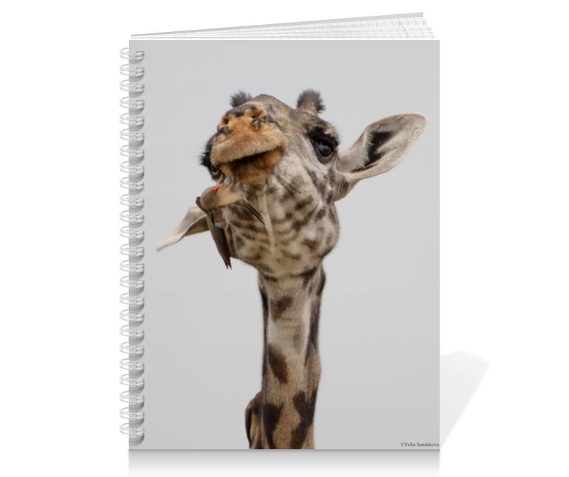 Printio Тетрадь на пружине Жираф с птицами (серия фото) 6