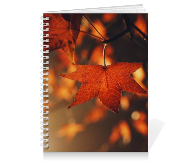 Printio Тетрадь на пружине Осень