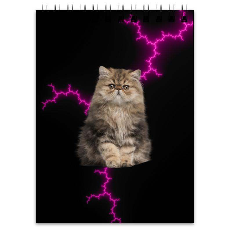 Printio Блокнот Кот и молния