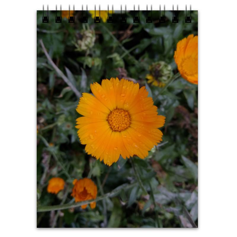 Printio Блокнот Летние цветы