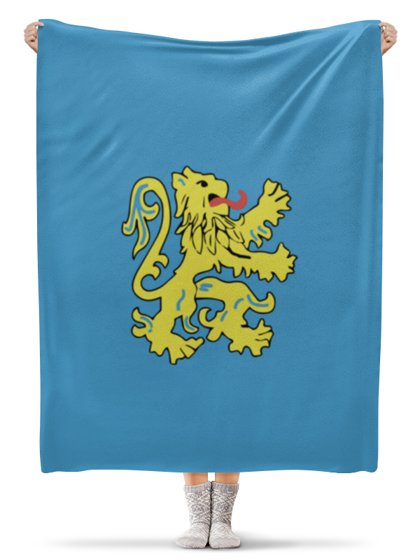 Printio Плед флисовый 130×170 см Герб квартиры шелдона