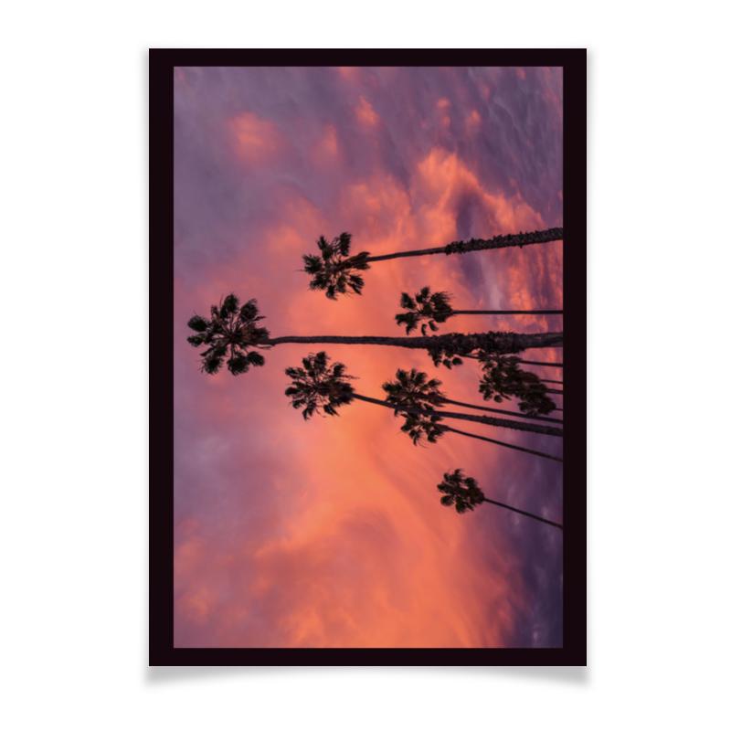 Printio Плакат A3(29.7×42) Пальмы