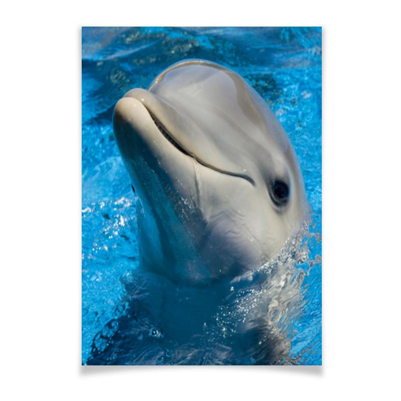 Printio Плакат A3(29.7×42) Дельфин 1
