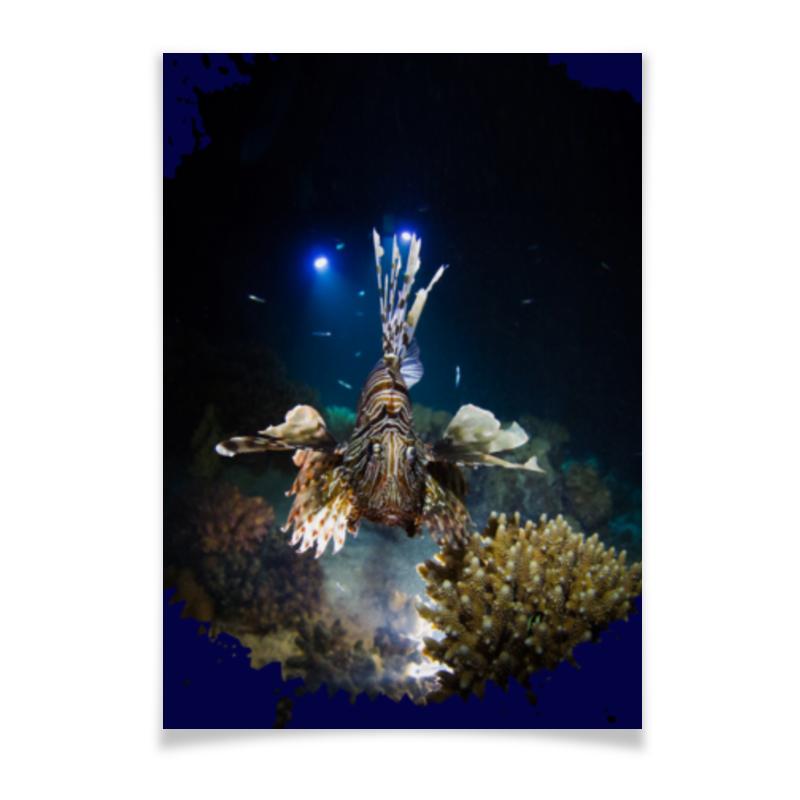 Printio Плакат A2(42×59) Рыба крылатка printio плакат a2 42×59 wonder woman