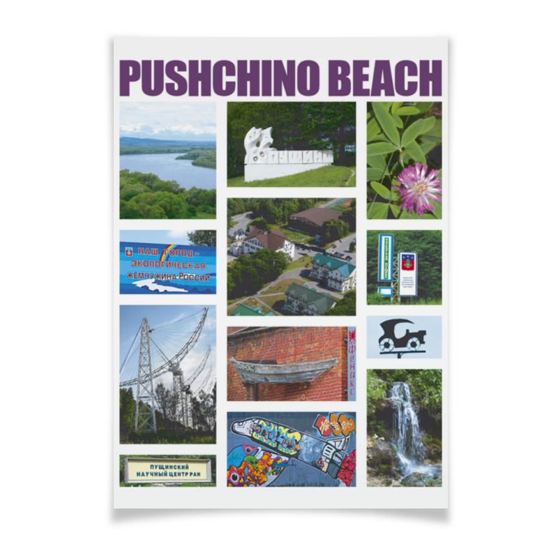 Printio Плакат A2(42×59) Сувениры подмосковья, пущино