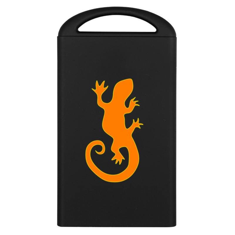 Printio Внешний аккумулятор Lizard wizard аккумулятор