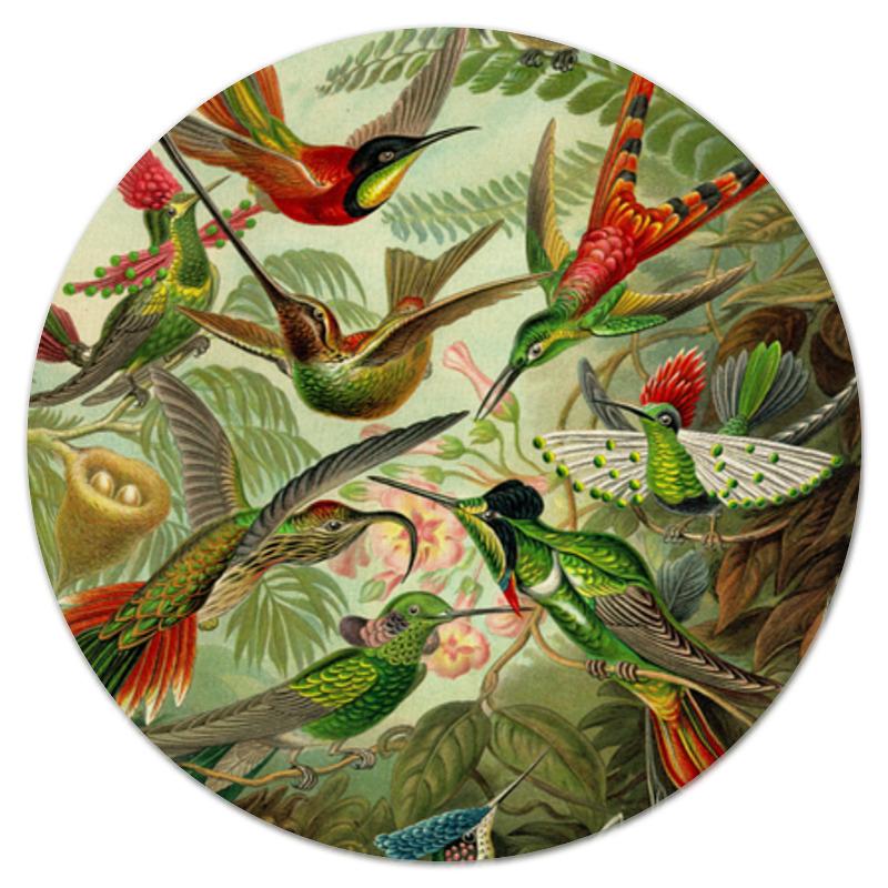 Printio Коврик для мышки (круглый) Колибри (trochilidae, ernst haeckel)