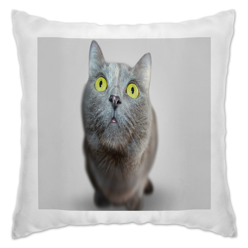 Printio Подушка Серый кот