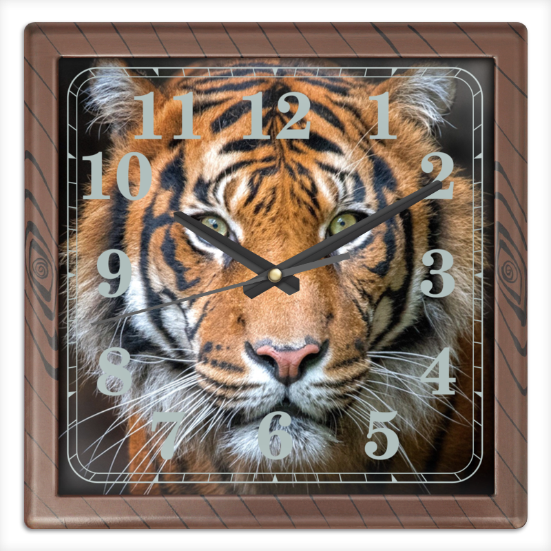 Printio Часы квадратные из пластика (под дерево) Тигры. живая природа printio часы квадратные из пластика под дерево разводы красок