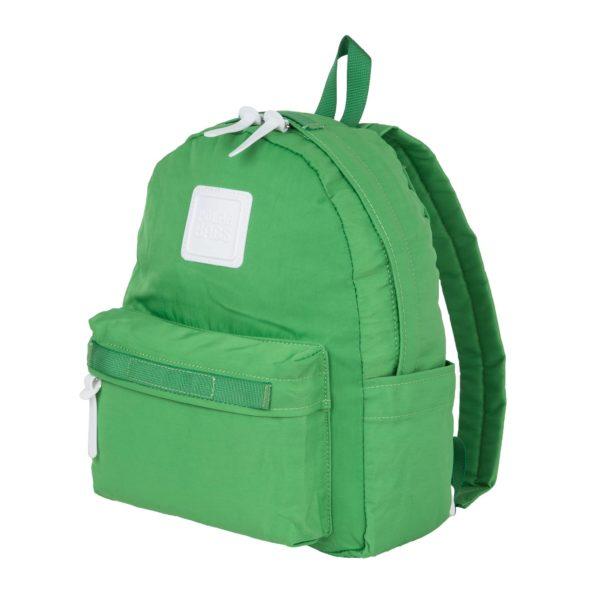 Polar 17202 green