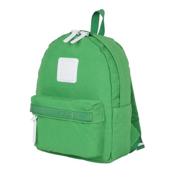 Polar 17203 green