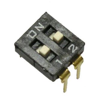 DS2-02
