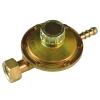 Редуктор газовый регулируемый РДСГ 1-Р для вентиля