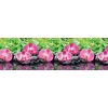 Интерьерная панель ABS орхидеи эпифиты 2000х600х1.5 мм