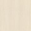 Панель стеновая МДФ 301х2700 мм износостойкая латте (лес белый)