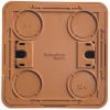 Выключатель 2-кл. ОП Этюд Дача 10А IP20 с подсветкой бук SchE BA10-006T