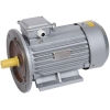 Электродвигатель АИР DRIVE 3ф 100L2 380В 5.5кВт 3000об/мин 2081 IEK DRV100-L2-005-5-3020