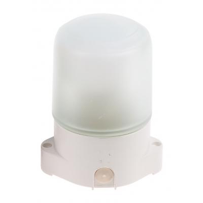 Светильник НББ 01-60-001 настенно-потолочный для бань и саун белый