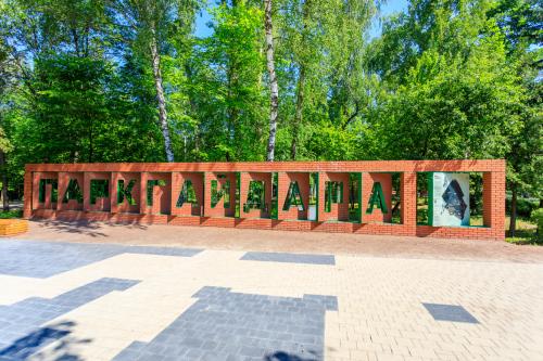 Архитекторы из 26 регионов России высоко оценили обновленный парк им. А.П. Гайдара в Арзамасе