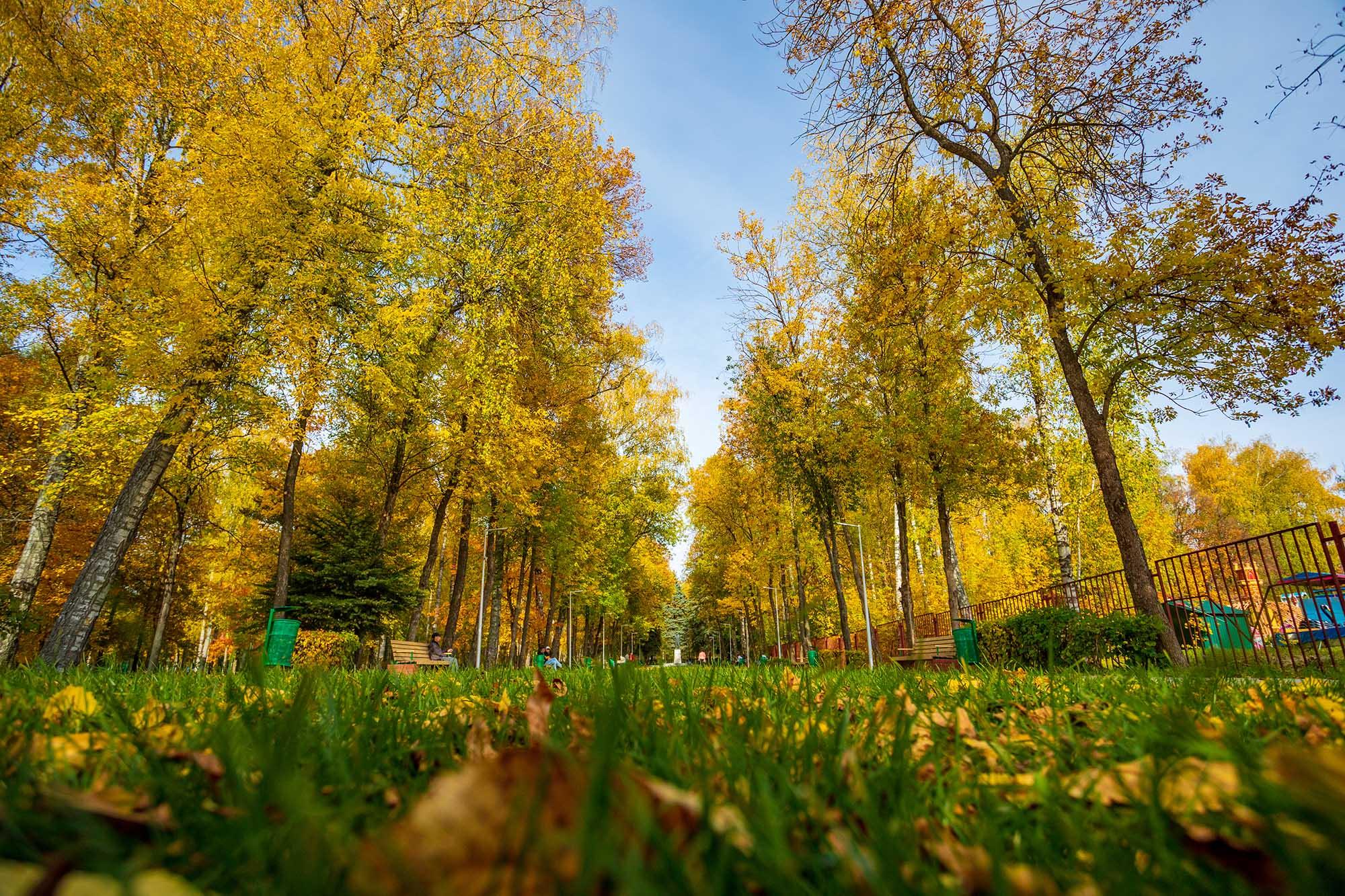 Парк культуры и отдыха имени А.П. Гайдара