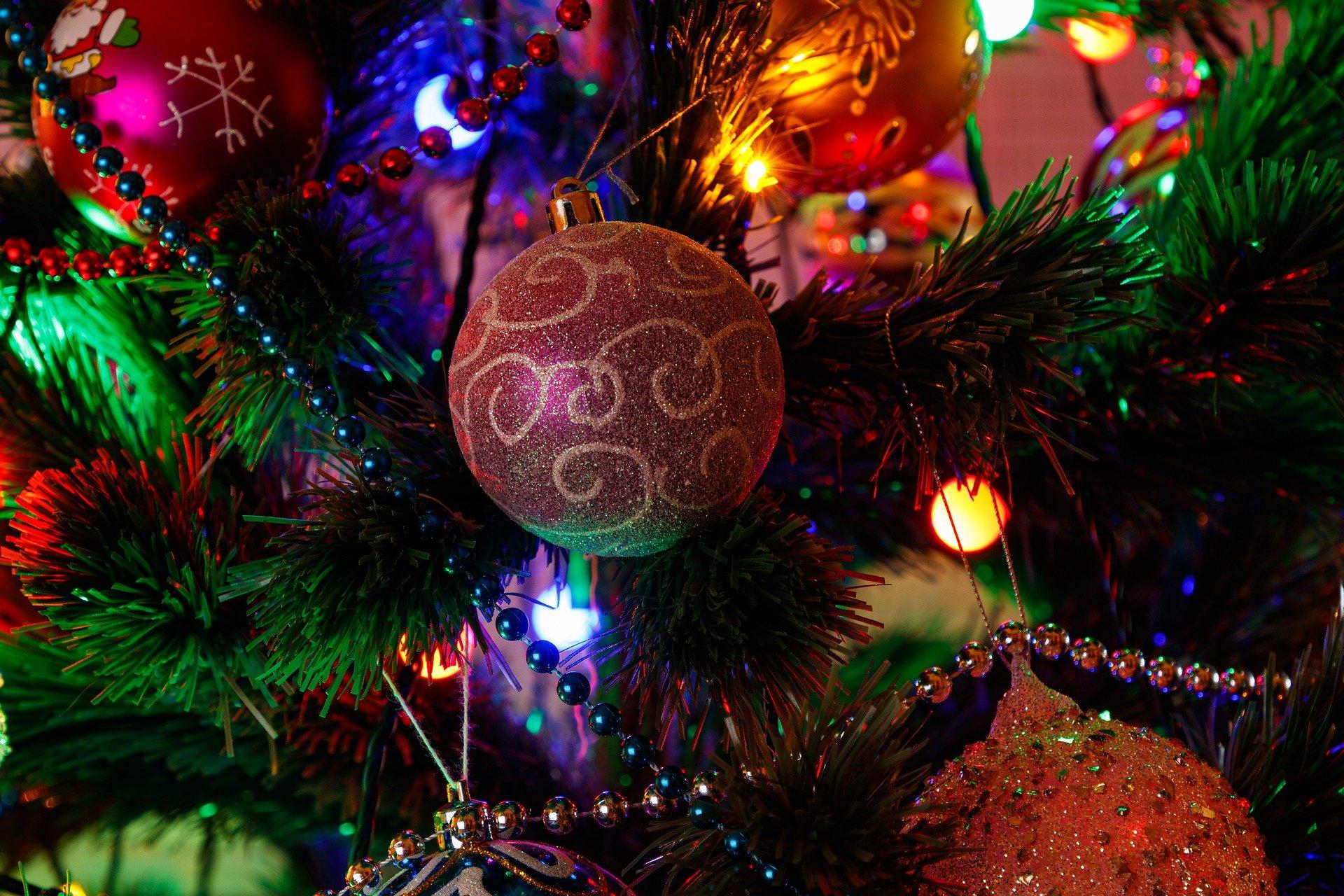 Новогодняя программа на Серафимовой земле: куда сходить и что посмотреть
