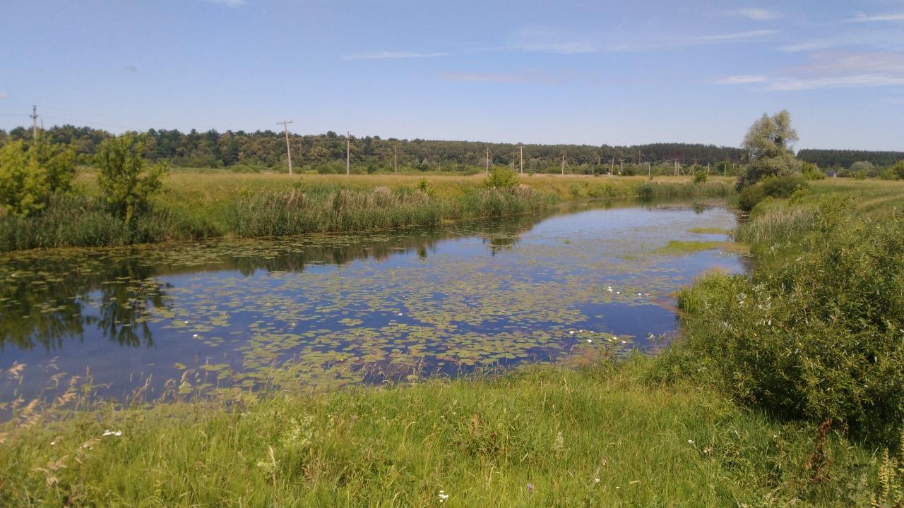 Работы по расчистке русла реки Вичкинзы в Дивееве выполнены на 90%, – минэкологии Нижегородской области