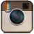 Животные из мира Инстаграм